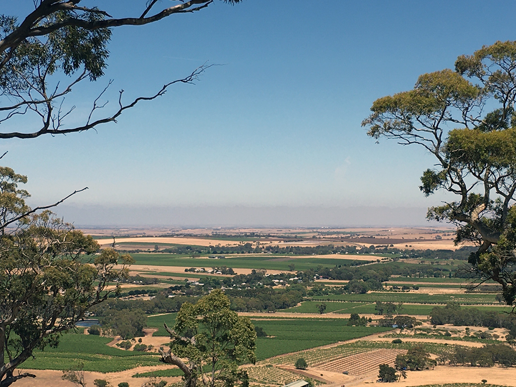 The Barossa Valley South Australia
